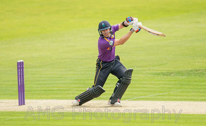Yorkshire v Leicestershire - 3rd August 2015