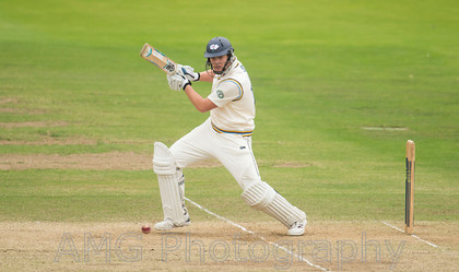 Yorkshire v Somerset - 25th September 2014