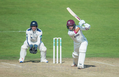 Yorkshire v Somerset - 13th September 2016