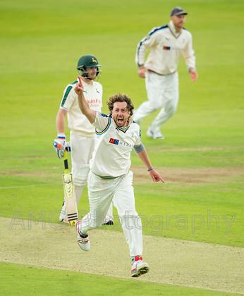 Yorkshire v Nottinghamshire - 22nd June 2015